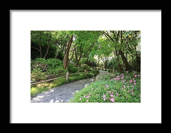 Garden Path Framed Print featuring the photograph Peaceful Garden Path by Carol Groenen