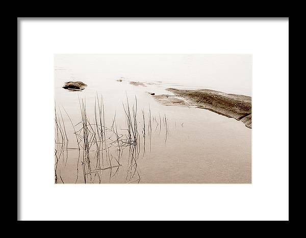 Water Framed Print featuring the photograph Peaceful Moment by Linda McRae