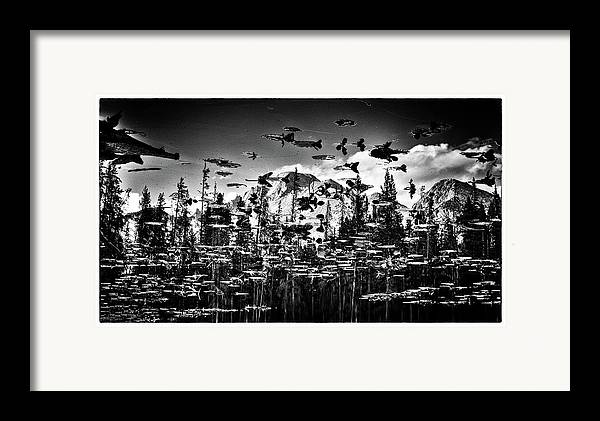 An Inverted Black And White Image Featuring Mountain Peaks Reflected On A Lily Pad Laden Pond In Colorado's Rocky Mountain National Park. Framed Print featuring the photograph Peaks And Pads by Kevin Munro