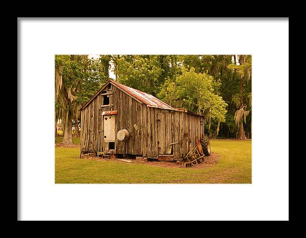 Cypress Shed Framed Print featuring the photograph Cypress Shed by Ronald Olivier