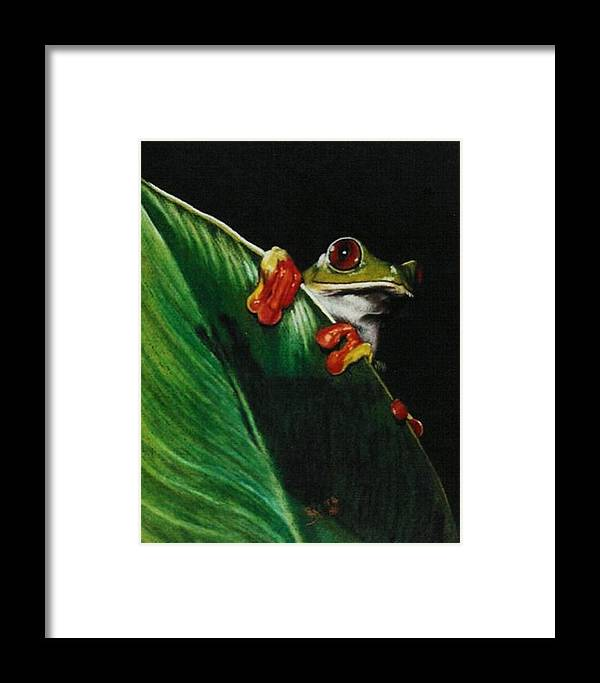 Frog Framed Print featuring the drawing Peek-a-boo by Barbara Keith