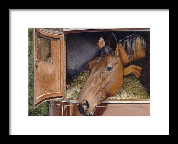 Horse Framed Print featuring the painting Peekin... by Deb Owens-Lowe