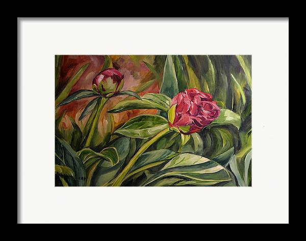 Garden Framed Print featuring the painting Peony Buds by Cheryl Pass