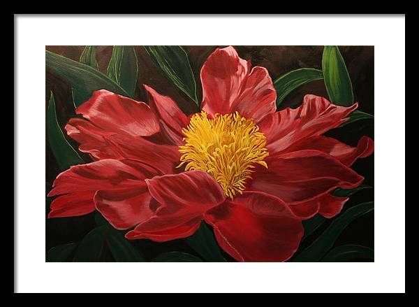 Floral Framed Print featuring the painting Peony Japonica by Robert Tower