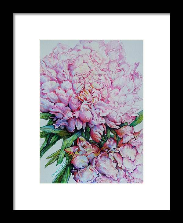 Flowers Peony Pink Ruffles Garden Blooms Framed Print featuring the drawing Peony Pink Parfait by Catherine Robertson
