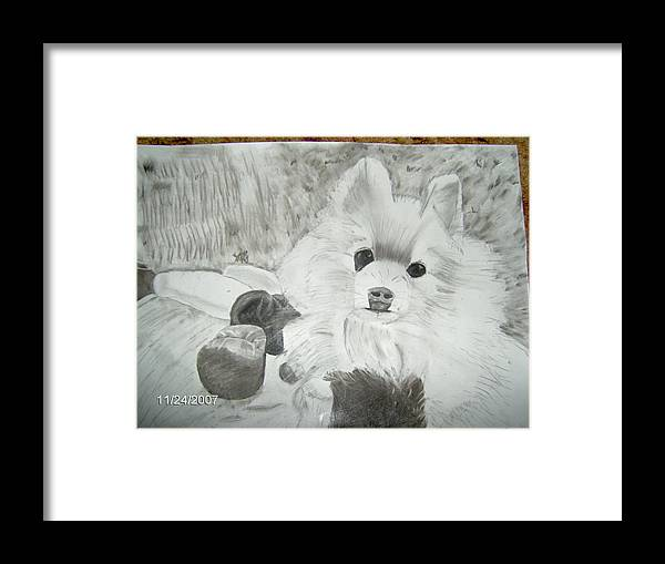 Dog Framed Print featuring the drawing Pepe by Tina Brown