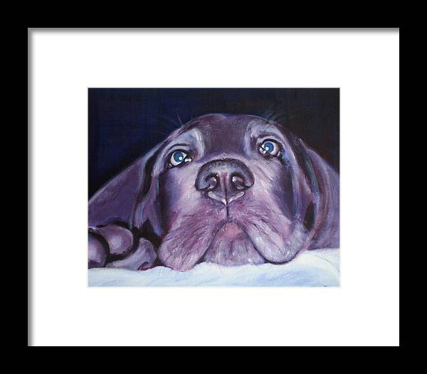 Portrait Framed Print featuring the painting Pepper by Fiona Jack