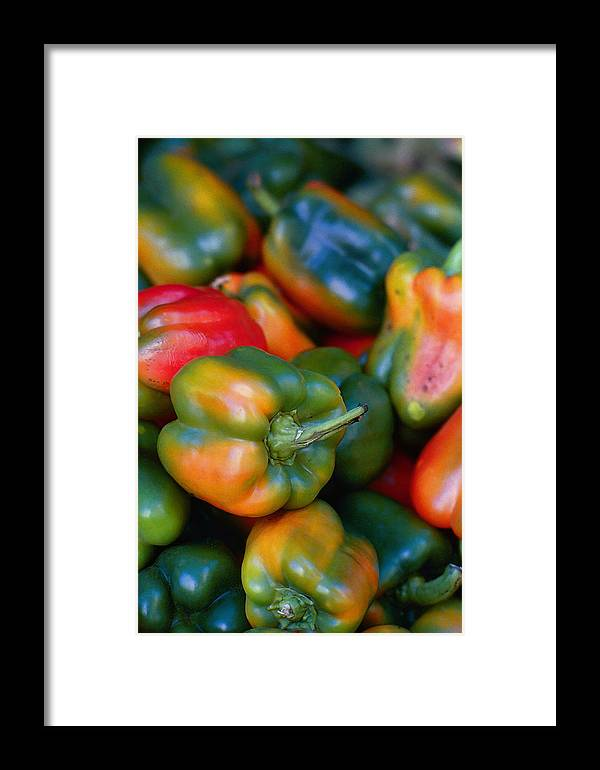 Peppers Framed Print featuring the photograph Peppers Of Many Colors by Robert Ullmann