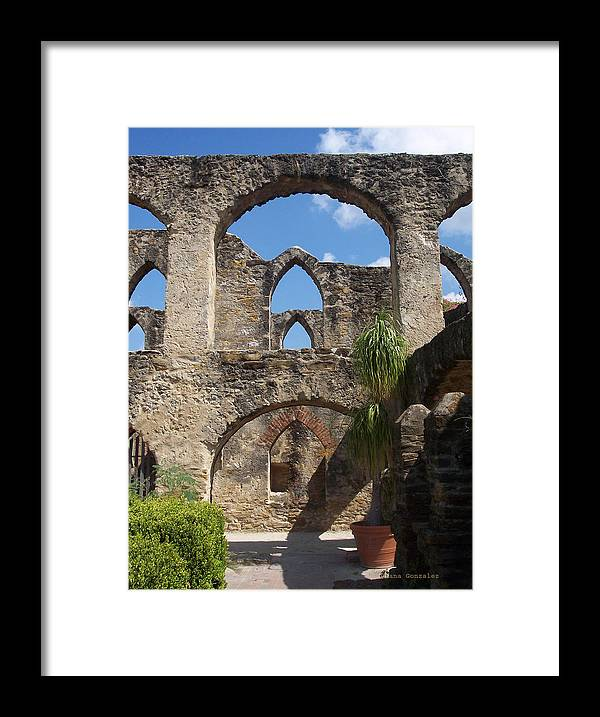 Nature Framed Print featuring the photograph Perception by Diana Gonzalez