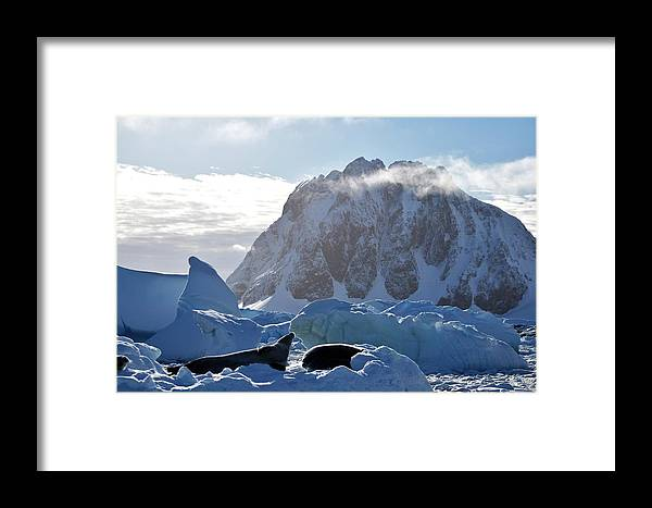 Ice Framed Print featuring the photograph Perfect Day. by Chris Hanlon