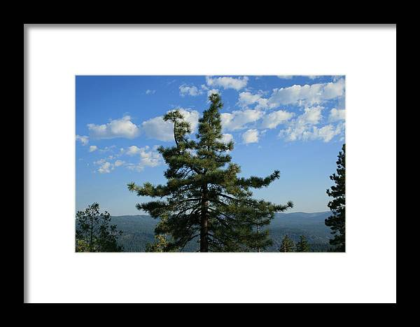 Veiw Framed Print featuring the photograph Perfect View by Joshua Sunday