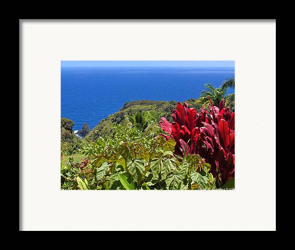 Landscape Framed Print featuring the photograph Perfect View by Nicole I Hamilton