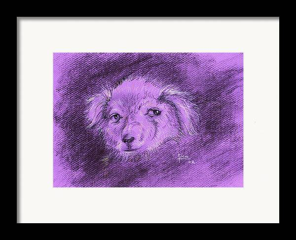 Dog Framed Print featuring the drawing Perro Electrico 1 by Victor Amor