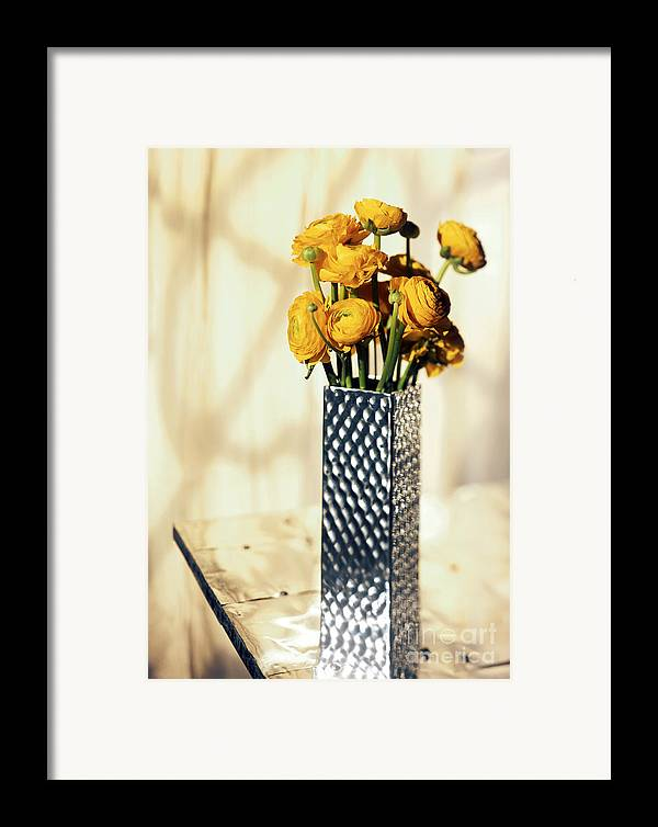 Persian Framed Print featuring the photograph Persian Buttercup by Tony Cordoza