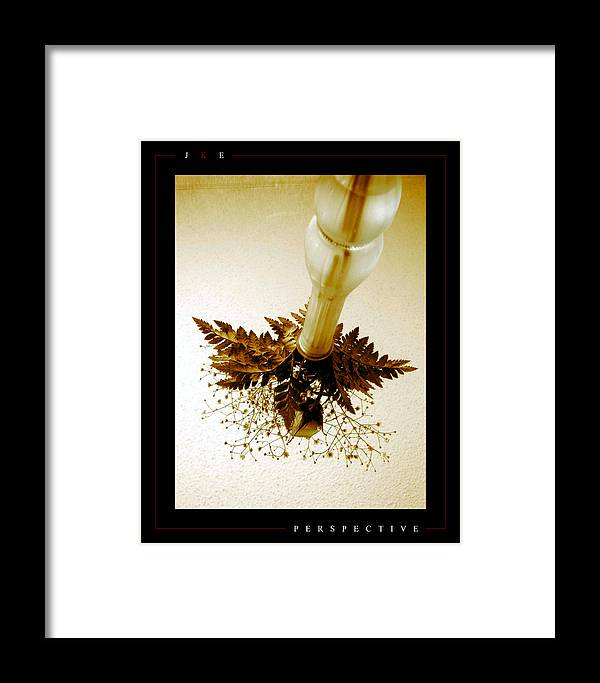 Flower Framed Print featuring the photograph Perspective by Jonathan Ellis Keys