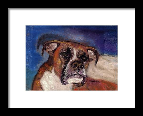 Pastel Pet Portraits Framed Print featuring the painting Pet Portraits by Darla Joy Johnson