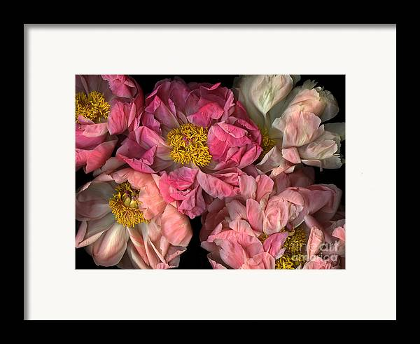 Cslanec Framed Print featuring the photograph Petticoats by Christian Slanec