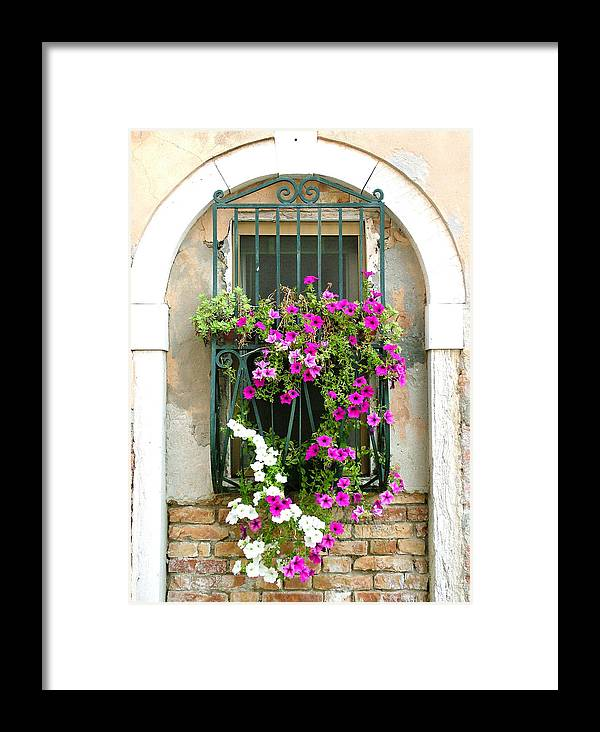 Petunias Framed Print featuring the photograph Petunias Through Wrought Iron by Donna Corless