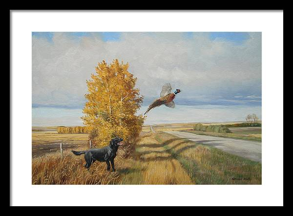 Prairie Landscape -pheasant Framed Print featuring the painting Pheasant Flush by Norman Kelly