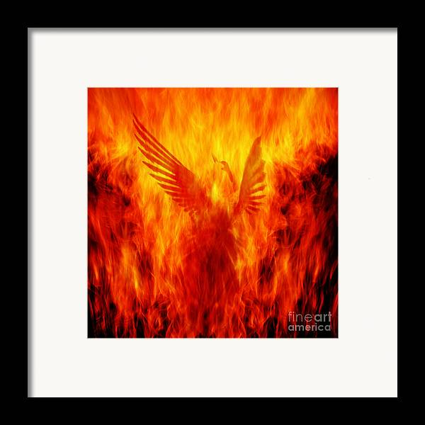 Phoenix Framed Print featuring the photograph Phoenix Rising by Andrew Paranavitana