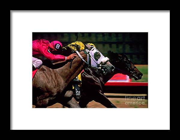 Horse Framed Print featuring the photograph Photo Finish by Kathy McClure