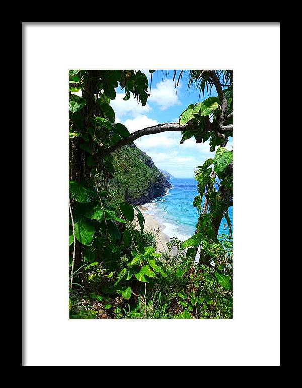 Hawaii Framed Print featuring the photograph Picturesque Hawaii by Natalia Wallwork