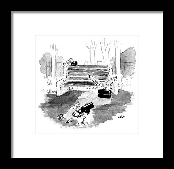 Bird Framed Print featuring the drawing Pigeon Lunch Break by Emily Flake