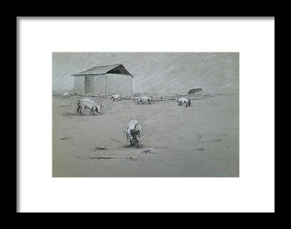 Pigs And Barn Framed Print featuring the drawing Pigs And Barn by GW Smith
