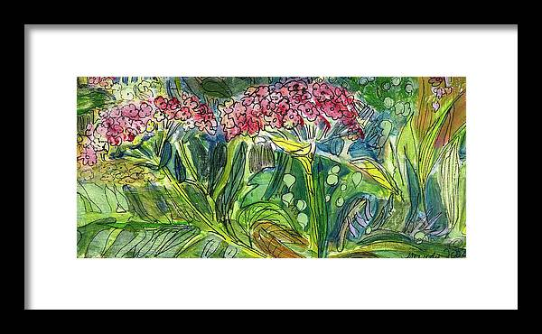Art Framed Print featuring the drawing Piinta The Butterfly Flower by Mindy Newman