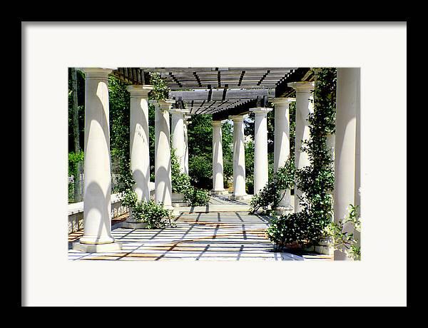 Pergola Framed Print featuring the photograph Pillars by Greg Sharpe