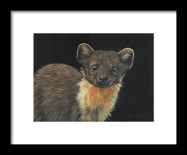 Pine Marten Framed Print featuring the painting Pine Marten by John Neeve