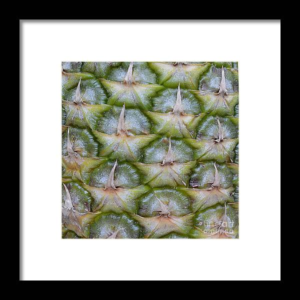Abstract Framed Print featuring the photograph Pineapple Close-up by Marv Vandehey