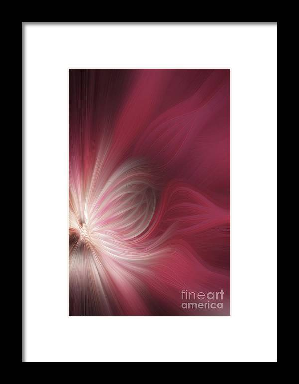 Design Framed Print featuring the photograph Pink And White Flower 0610 by Howard Roberts