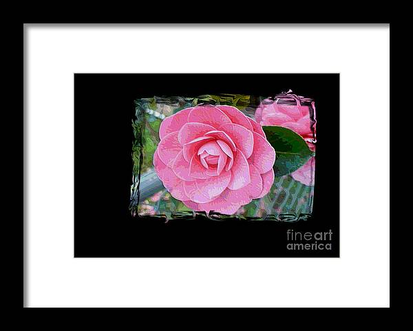 Pink Camelllias Framed Print featuring the photograph Pink Camellias With Fence And Framing by Carol Groenen