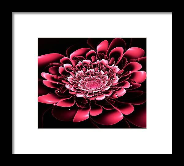 Flower Framed Print featuring the digital art Pink Flower by Anastasiya Malakhova