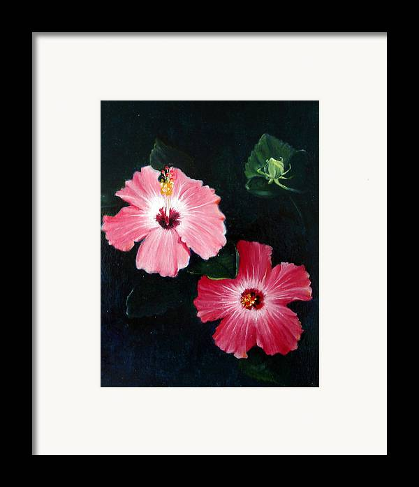 Oil Framed Print featuring the painting Pink Hibiscus by Bonnie Haversat
