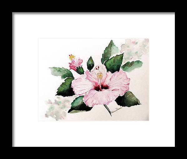 Hibiscus Painting  Floral Painting Flower Pink Hibiscus Tropical Bloom Caribbean Painting Framed Print featuring the painting Pink Hibiscus by Karin Dawn Kelshall- Best