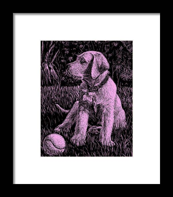 Pink Labrador Puppy Dog Framed Print featuring the painting Pink Labrador Puppy Dog by Irina Sztukowski