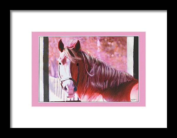 Mare Looking Out Of Her Stable Framed Print featuring the digital art Pink Mare by John Breen