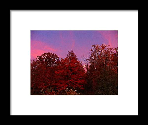 Moon Framed Print featuring the photograph Pink Moonlite Night by Judy Waller