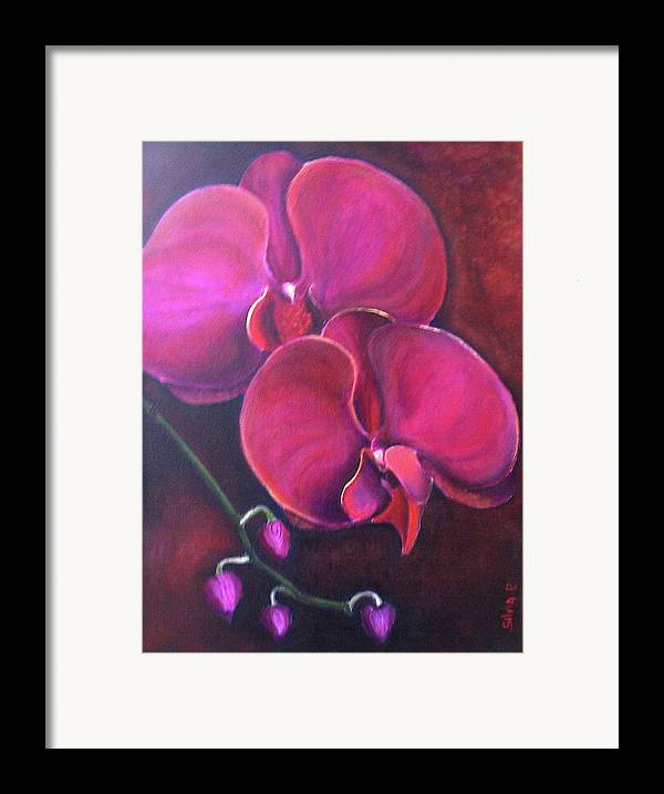 Orchid Framed Print featuring the painting Pink Orchid by Silvia Philippsohn
