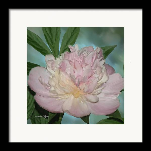 Pink Peony Framed Print featuring the painting Pink Peony by Elzire S