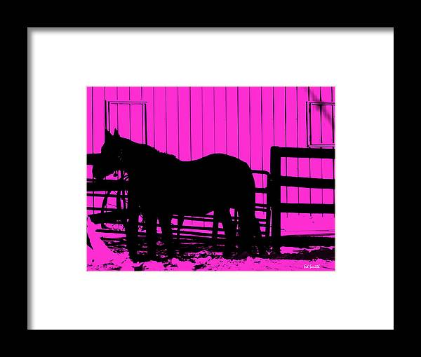 Pink Pony Framed Print featuring the photograph Pink Pony by Ed Smith