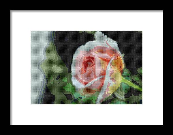 Nature Framed Print featuring the photograph Pink Rose by James Owens