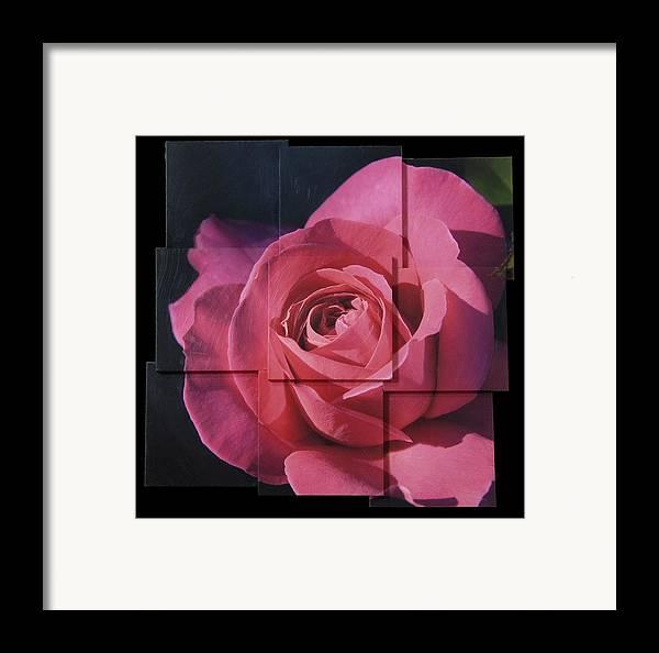 Rose Framed Print featuring the sculpture Pink Rose Photo Sculpture by Michael Bessler