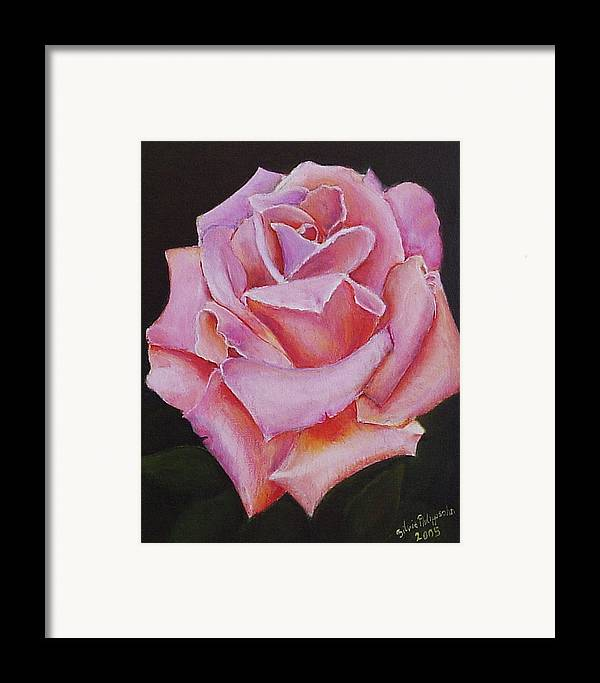 Rose Framed Print featuring the painting Pink Rose by Silvia Philippsohn