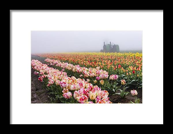 Agriculture Framed Print featuring the photograph Pink Tulips And Tractor by John Trax