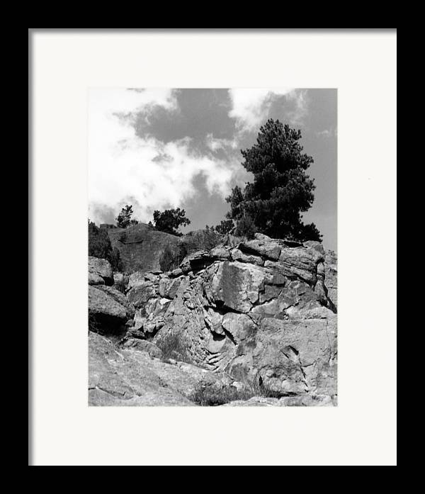 Landscape Framed Print featuring the photograph Pinnacle Pine by Allan McConnell
