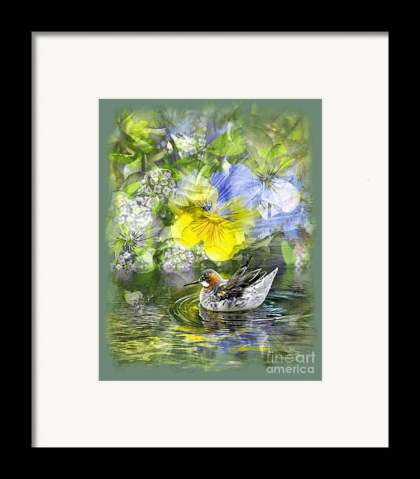 Floral Framed Print featuring the photograph Pintail Pond by Chuck Brittenham