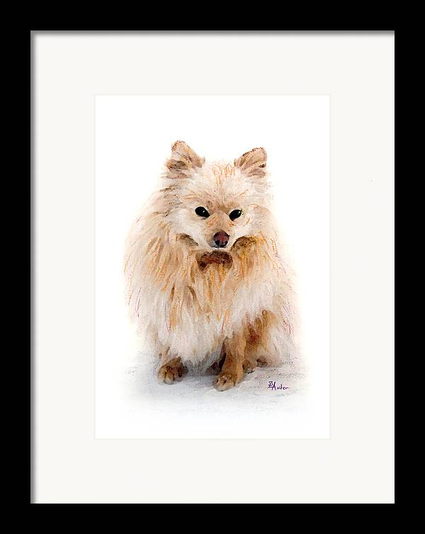 Pomeranian Framed Print featuring the pastel Pip by Brent Ander